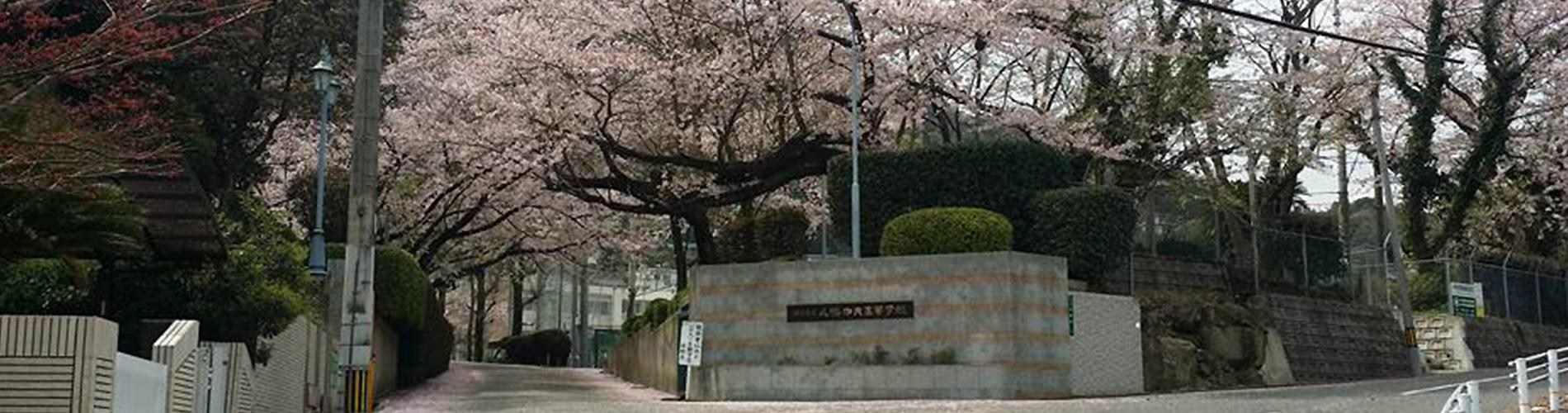 八幡中央高等学校(正門)